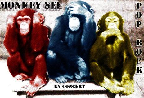 affiche monkey 1
